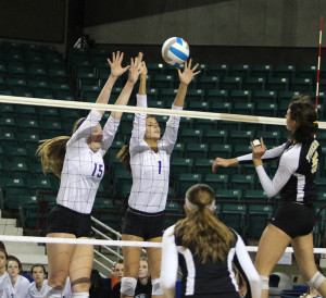 Volleyball defeats Blue Valley in state tournament