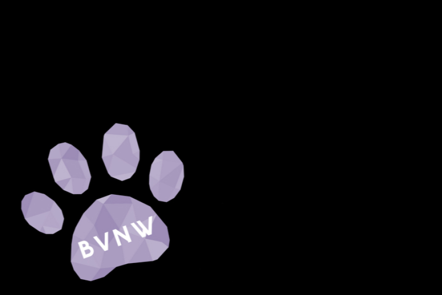 The paw print appears in the bottom left corner of Snapchats taken at BVNW.