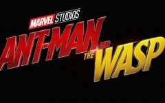 "Little criticism for ""Ant-Man and the Wasp"""