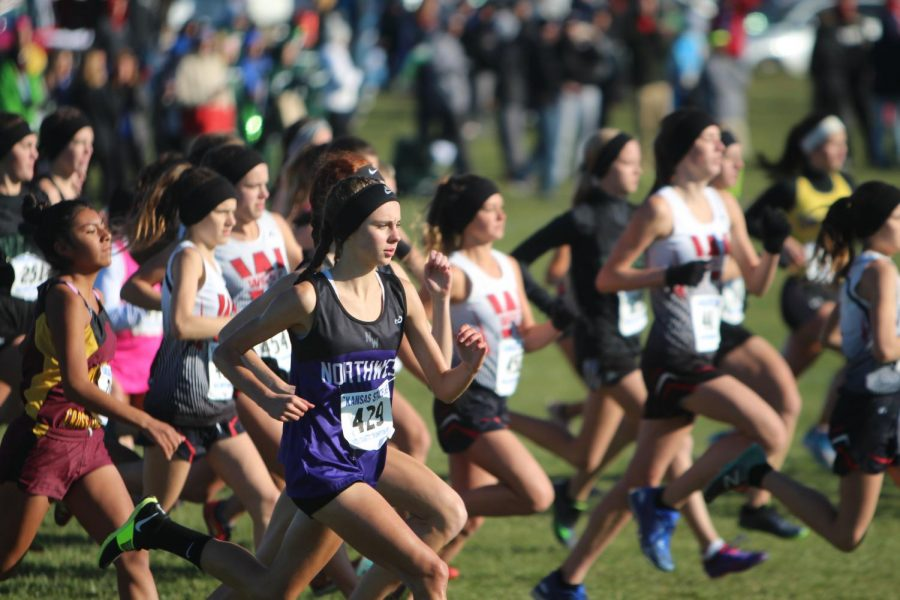 Junior Riley Beach runs in the 6A state cross country meet, on Oct. 28.