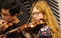 Chamber Symphony plays its way into orchestra lineup