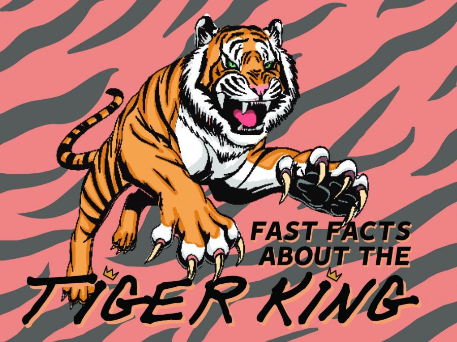 Fast Facts About the Tiger King