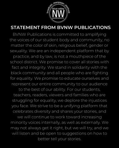 BVNW Publications statement regarding race
