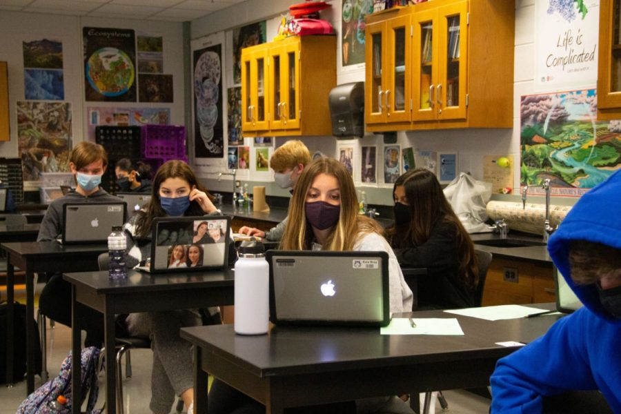 Students work on their laptops during Biology class, March 23.
